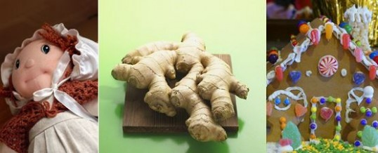From Nature – Ginger