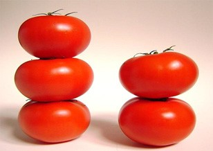 A Tomato = Fifty Litres of Water