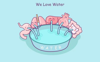 AquAid Water Health – Drinking water in summer – watch those kidneys!