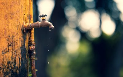 Water Crises – All Year Round